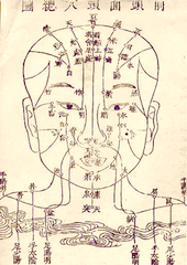 Ancient parchment diagram of meridians of the face.